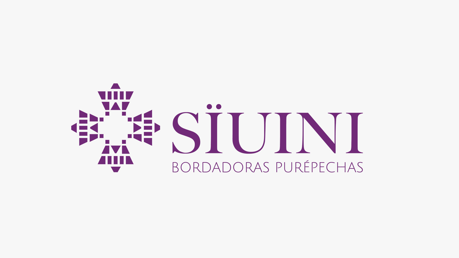 diseno-grafico-logotipo-branding-3-suini-universidad-iberoamericana-quinta-imagen