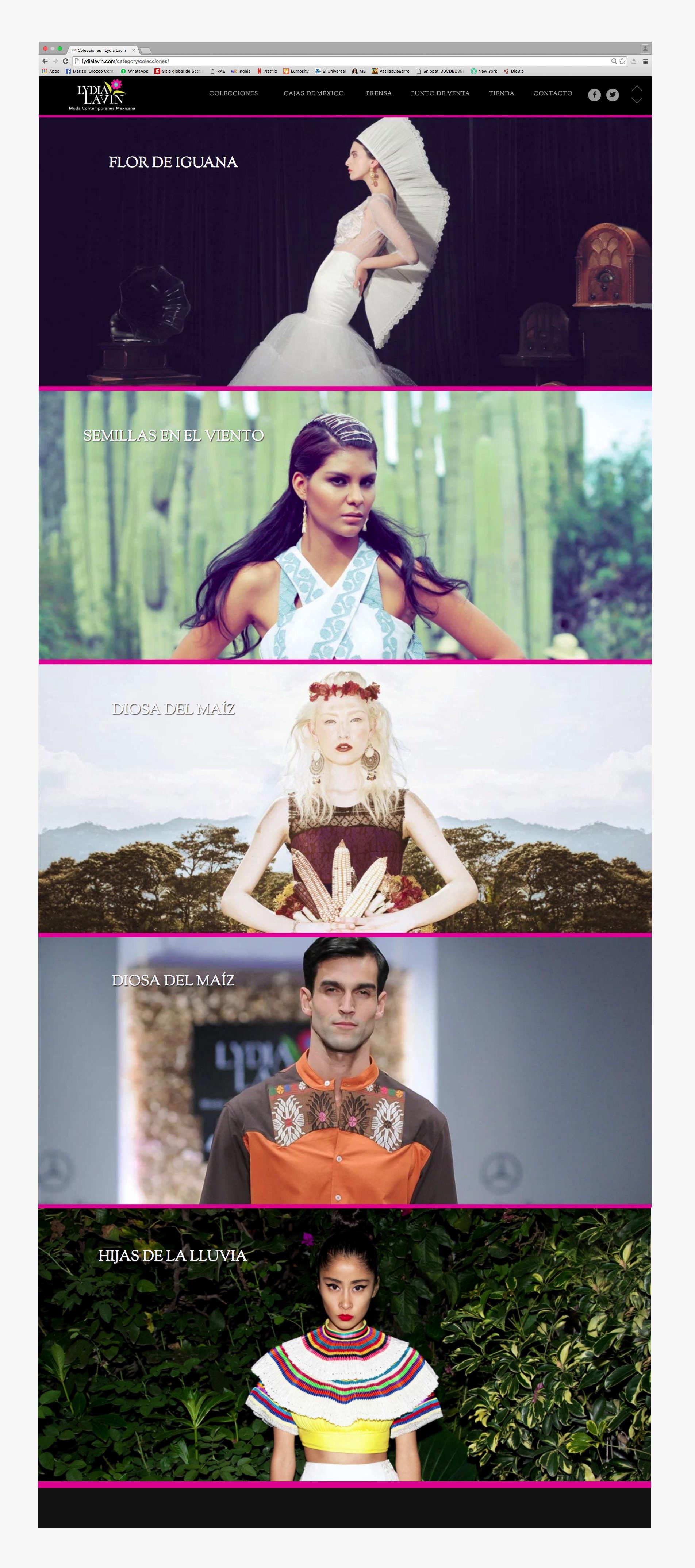 Pagina del sitio web de lydia lavin donde muestra todas sus colecciones