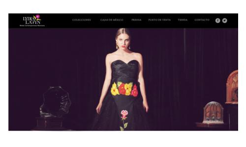Home del sitio web de lydia lavin, pagina principal