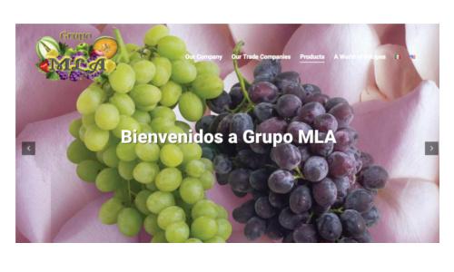 página principal del sitio de MLA, de frutas